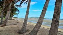 Rose Bay, Bowen