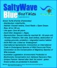 SaltyWaveBlue_EcoTales_GreenTurtles@2x